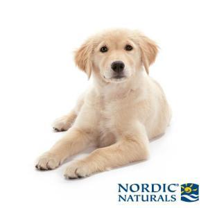 NORDIC NATURALS PET
