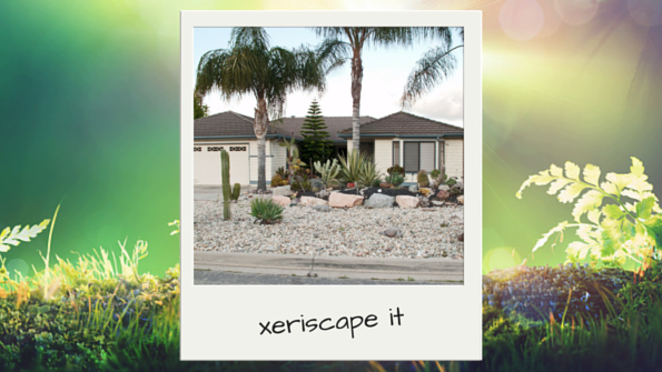 xeriscapeit-earthday